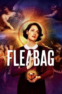 copertina serie tv Fleabag 2016