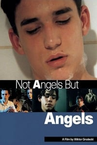 Not Angels but Angels