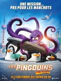 Les Pingouins de Madagascar : Opération recherche et sauvetage (2014)
