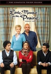 Little Mosque on the Prairie S03E10