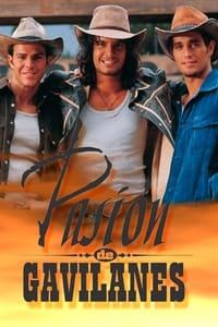 copertina serie tv Pasi%C3%B3n+de+gavilanes 2003