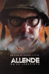Allende en su laberinto (2014)