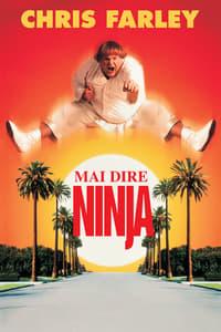 copertina film Mai+dire+ninja 1997