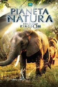 copertina film Pianeta+Natura+-+Enchanted+Kingdom 2014