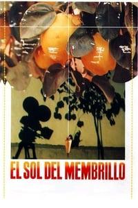 copertina film Il+sole+della+mela+cotogna 1992