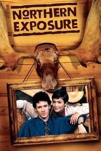 copertina serie tv Un+medico+tra+gli+orsi 1990