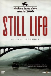 copertina film Still+Life 2006