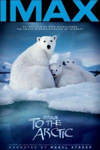 copertina film To+the+Arctic 2012