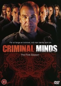 Criminal Minds S01E13