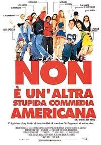 copertina film Non+%C3%A8+un%27altra+stupida+commedia+americana 2001