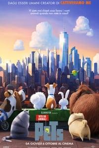 copertina film Pets+-+Vita+da+animali 2016