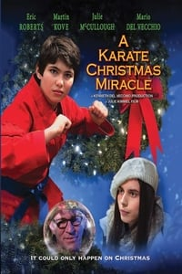 A Karate Christmas Miracle