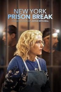 NY Prison Break: The Seduction of Joyce Mitchell