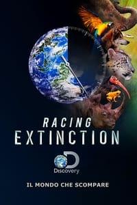 copertina film Racing+Extinction 2015