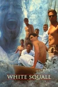 copertina film L%27Albatross+-+Oltre+la+tempesta 1996