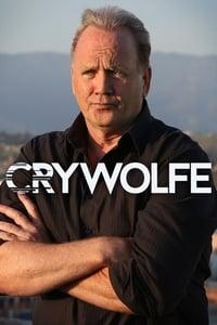 copertina serie tv Cry+Wolfe 2014