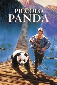 copertina film Piccolo+panda 1995
