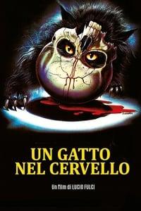 copertina film Un+gatto+nel+cervello 1990