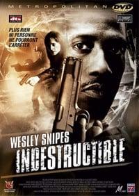 Indestructible (2004)