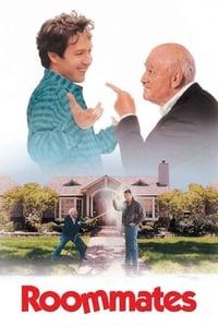 copertina film Un+adorabile+testardo 1995