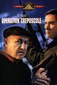 Opération crépuscule (1989)