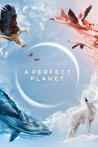 Un planète Parfaite (2021)