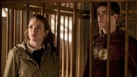 VER The Flash Temporada 3 Capitulo 13 Online Gratis HD