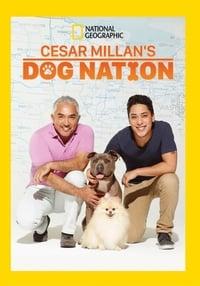 Cesar Millan's Dog Nation S01E07