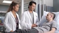 VER The Good Doctor Temporada 3 Capitulo 11 Online Gratis HD