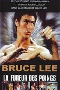 Bruce Lee the immortal dragon