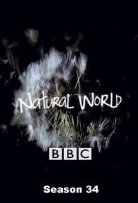 Natural World S34E10