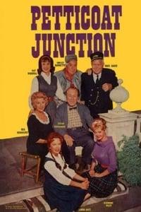 copertina serie tv Petticoat+Junction 1963