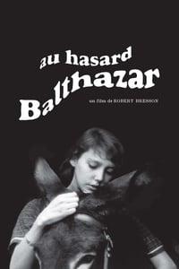 copertina film Au+hasard+Balthazar 1966