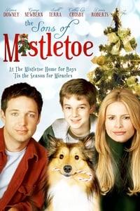 Un Noël pas comme les autres (2001)