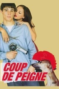 Coup de peigne (2001)