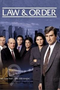 Law & Order S09E13