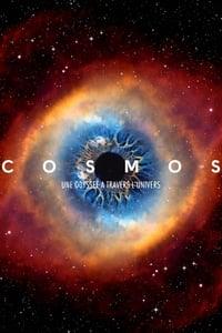 Cosmos : Une odyssée à travers l'univers (2014)