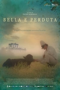 copertina film Bella+e+perduta 2015