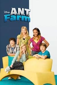 copertina serie tv A.N.T.+Farm+-+Accademia+nuovi+talenti 2011