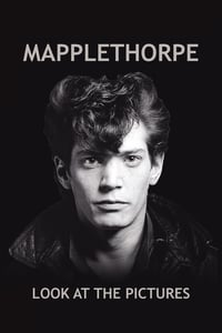 Mapplethorpe – Look at the Pictures (2016)