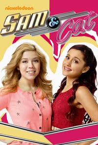 copertina serie tv Sam+%26+Cat 2013