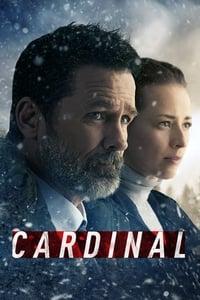 copertina serie tv Cardinal 2017