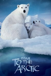 copertina film To+the+Arctic 2012