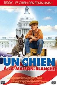 Un chien à la Maison Blanche (2010)
