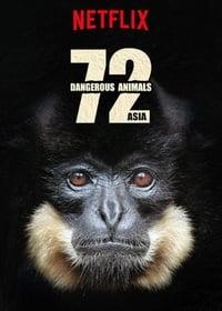 copertina serie tv 72+animali+pericolosi%3A+Asia 2018