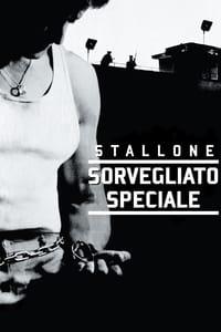 copertina film Sorvegliato+speciale 1989