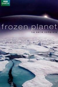 copertina serie tv Frozen+Planet 2011