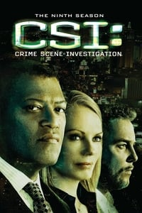 CSI: Crime Scene Investigation S09E13