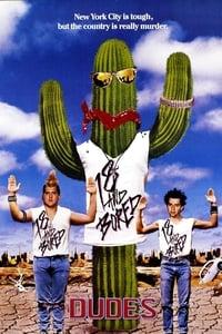 copertina film Dudes%2C+diciottenni+arrabbiati 1987
