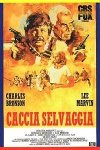 copertina film Caccia+selvaggia 1981